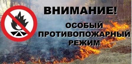 Введение особого противопожарного режима
