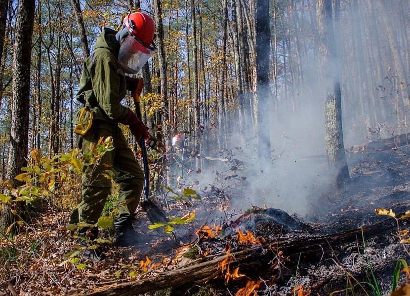 Высокий уровень пожарной опасности действует на Кубани