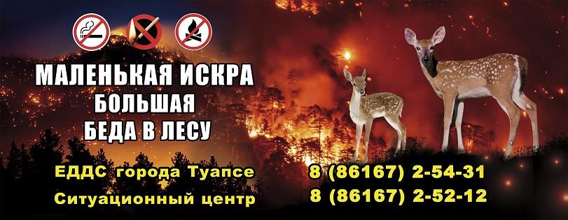Горячая линия по приему  информации о лесных пожарах или угрозе их возникновения.